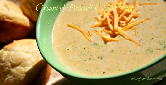 Cream of Broccoli-Cheese Soup
