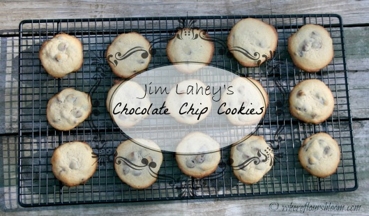 jl chocolate chip cookies