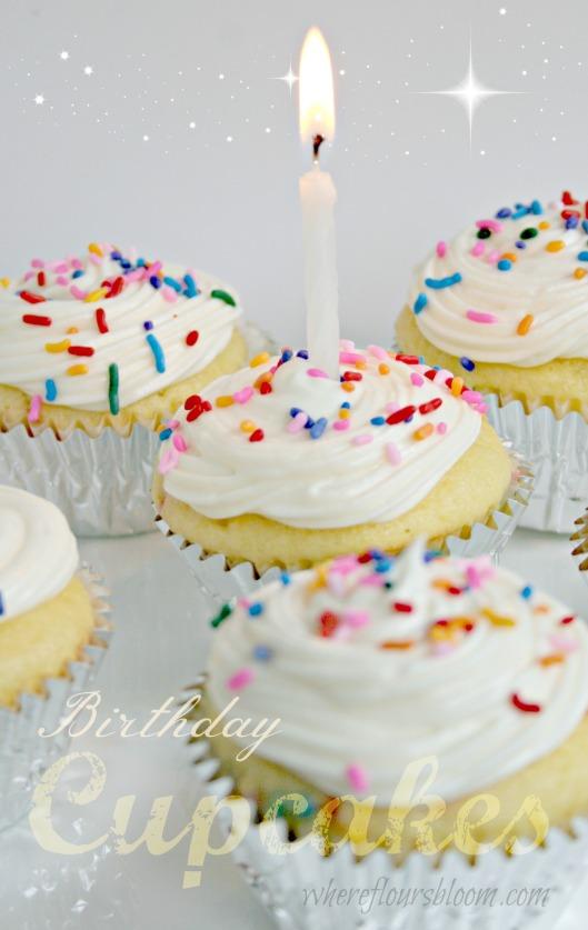 birthday cupcakes wfb