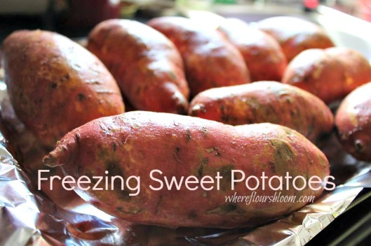 freezing sweet potatoes
