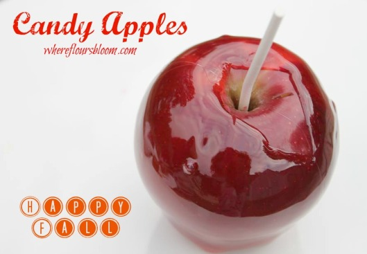 candy apples wfb