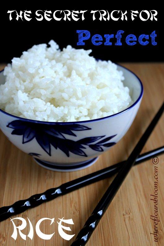 rice wfb